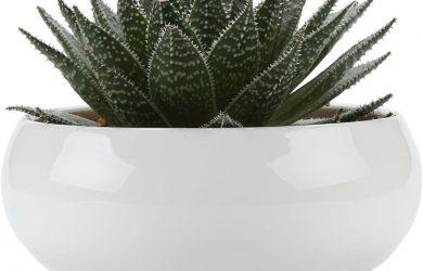 T4U Conjunto de 1 Ceramica Blanca