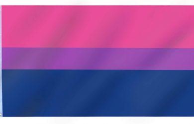Bandera Bisexual – Gran Tamaño para Interiores y Exteriores