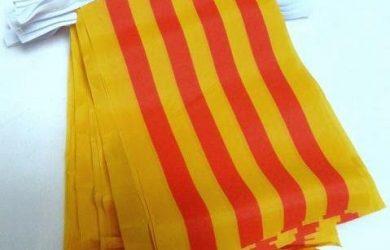 Guirnalda 6 Metros 20 Banderas de CATALUÑA 21x15cm